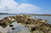 Pobřeží Atlantského oceánu v odlivu — Stock fotografie