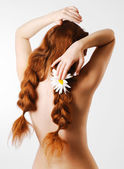 Female back with a camomile in the red tress — Stock Photo