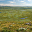Stock Photo: Green plateau with many small lakes. Swedish Lapland in summer.