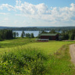 Country landscape with earth road and lake — Stock fotografie