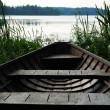 Wooden boat in green reed of lake. — Stock fotografie