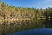Finnish forest lake of Manamansalo — Stock Photo
