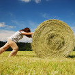 Woman pushing straw bale on — Stock Photo #39837793