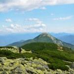 ������, ������: Carpathian Mountains