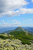 Carpathian Mountains. — Stockfoto