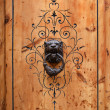 Close-up of wooden door with Aragon patterns. — Photo