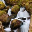 Close-up of water falling on moss-grown stones — Stock Photo