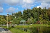 Landscape park in autumn — Stock Photo