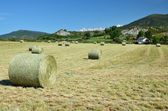 Country landscape in the Spanish Pyrenees — Stock Photo