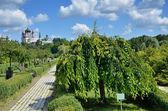 Landscape park Feofaniya in the Ukrainian capital — Stock Photo