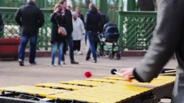 Xylophone in the park. St. Petersburg. Russia. txt — Stock Video