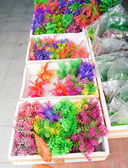 Colorful for fish tank. — 图库照片