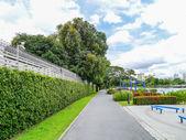 Park on summer — Stock Photo