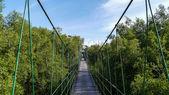 Puente colgante — Foto de Stock