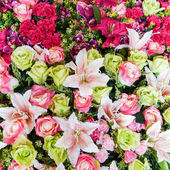 Colorful flowers fake — Stock Photo