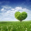 Tree in the shape of heart, valentines day background — Stock Photo