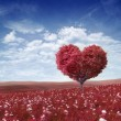 图库照片: Ree in the shape of heart, valentines day background