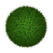 Grass Ball — Stock Photo