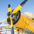 Stock Photo: Winter plane AN-2