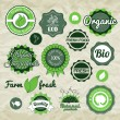 Collection green vector labels, badges and icons — Stockvectorbeeld