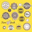 Collection labels, badges and icons — Stock Vector