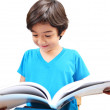 Little boy study and reading book — Stock Photo