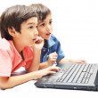 Stock Photo: Little sibling boys use laptop for education on white background