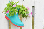 Gardening idea acceseries boot pot — Foto Stock