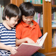 Little sibling Boy in library holding book — Stock Photo