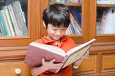 Little Boy in library holding book — Stock Photo