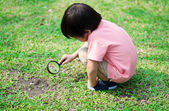 Little boy exploring with magnifying glass at the park — Stock Photo