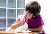 Little boy kissing little cat — Stock Photo