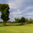 Golf field on cloudy day — Stok Fotoğraf #31978865