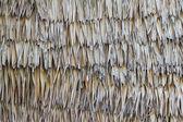 Ancien mur de la maison de la nypa fruticans, palmier nypa — Photo