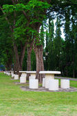 мраморный стол под дерево — Стоковое фото