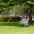 White chair under the trees and in lawn — Zdjęcie stockowe