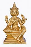 Brahma dorado — Foto de Stock