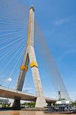 Kabel bridge — Stock fotografie