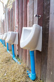 Urinal on old wooden wall — Stock Photo