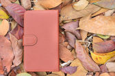 Smartphone leather case cover — Stok fotoğraf