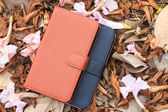 Smartphone leather case cover on dried leafs and flower — Stock Photo