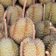 Durians in the market, famous fruit in Thailand — Stock Photo