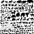 Animal silhouettes set — Stock Vector