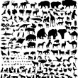 Stock Vector: Animal silhouettes set