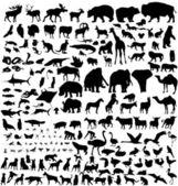 Animal silhouettes set — Stock Vector