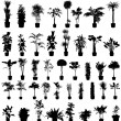 Plants silhouettes set — Stock Vector