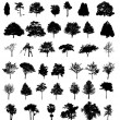 Large trees silhouettes set — Stock Vector #31923235