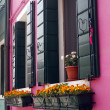 Flowers at windows of pink house — Stock Photo #31243579