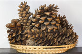 Basket of cones — Stock Photo