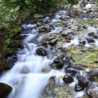 Long Exposure Photo Of A Mountain Stream — Stock Photo